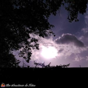 El Sol en Alemania - Al mal tiempo buena cara