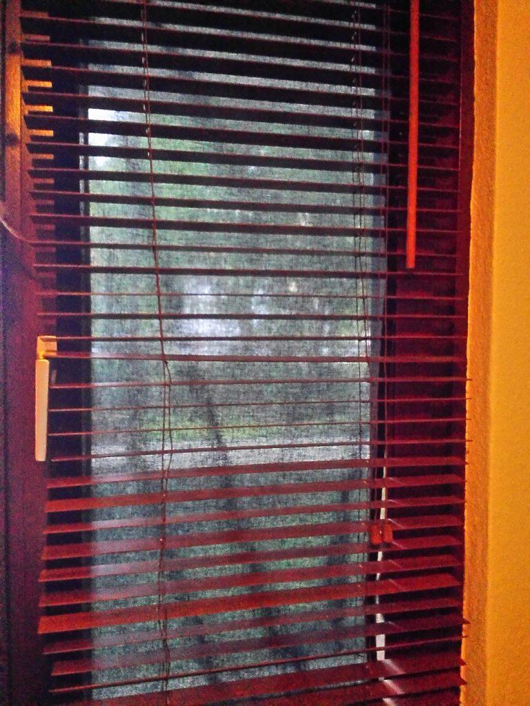 Las persianas en Alemania brillan por su ausencia, tienes que buscarte las castañas