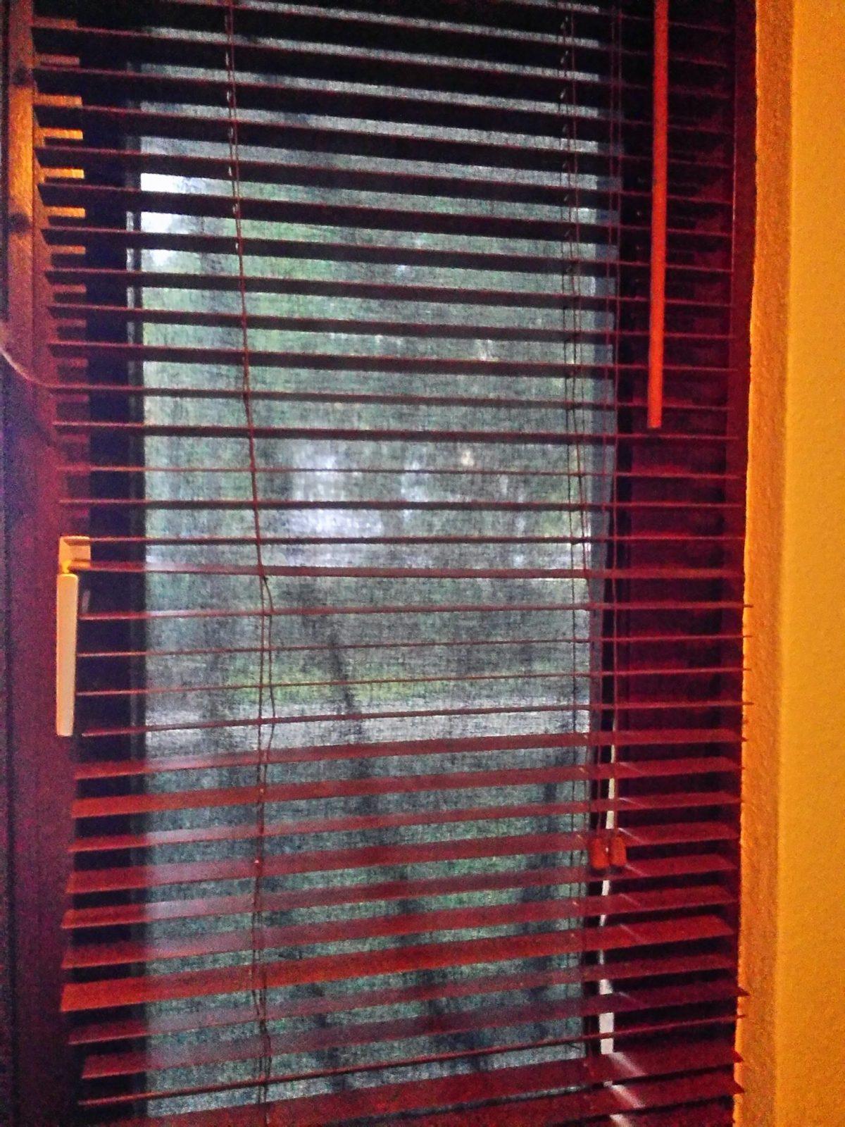 Diferencias 6: Las ventanas