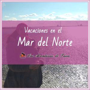 Vacaciones en el Mart del Norte - Center Parcs Nordsee