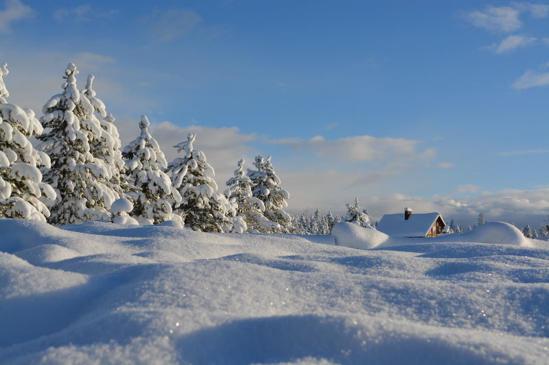 Invierno en Alemania - Como prepararse - Foto ilustrativa de un campo nevado