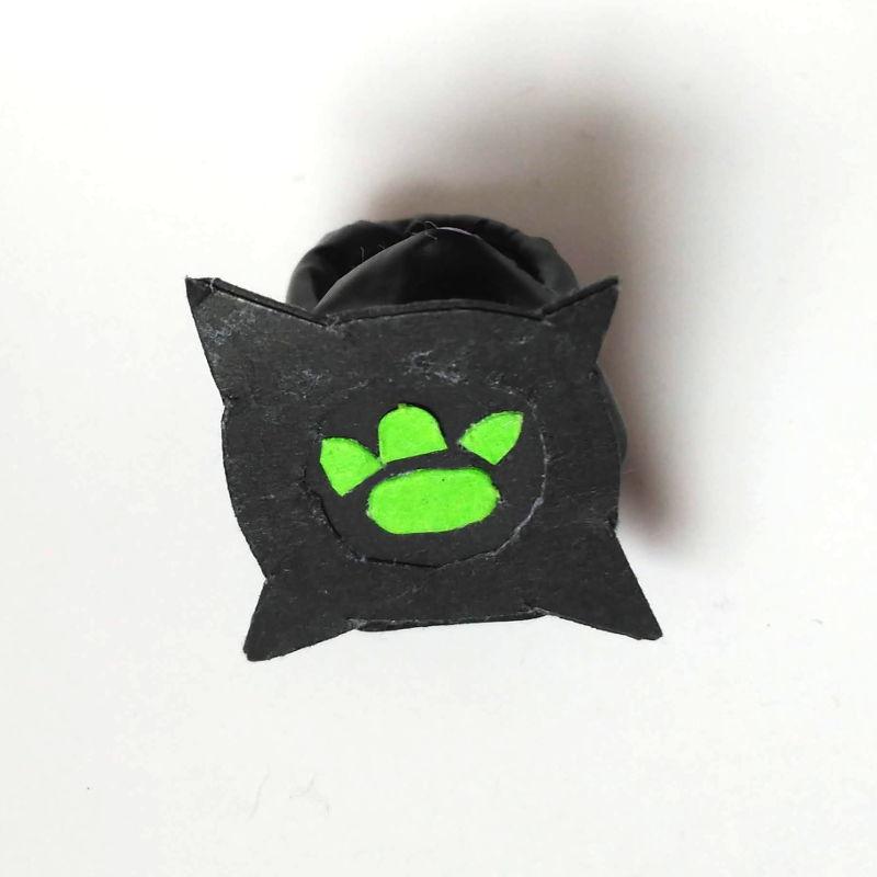 El anillo, Prodigio de Cat Noir casero