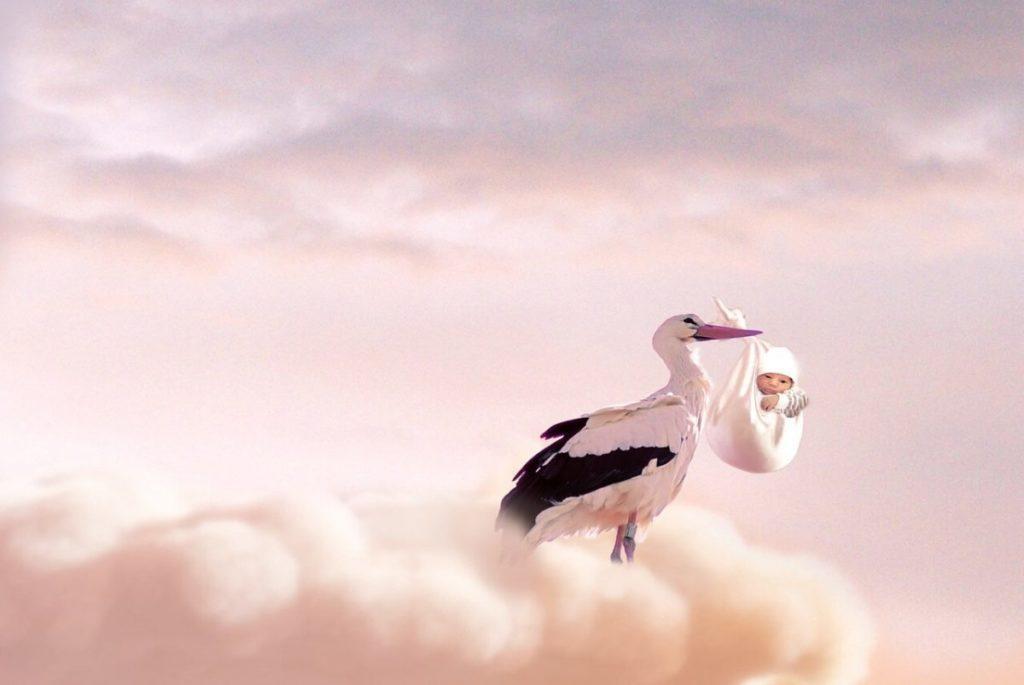 Ideas para anunciar el embarazo - imagen ilustrativa una cigueña con un bebé.